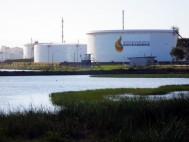 Controle acionário da empresa é dividido entre Petrobras, Ultrapar e Braskem - Foto: Fabio Dutra